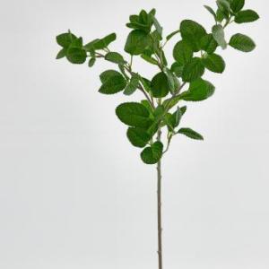 MUNT CHIC TAK H60 GREEN