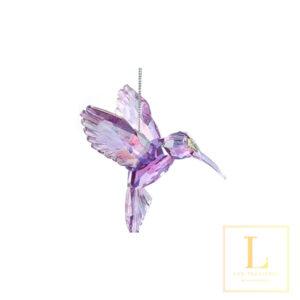 Hummingbird Acryl Ired
