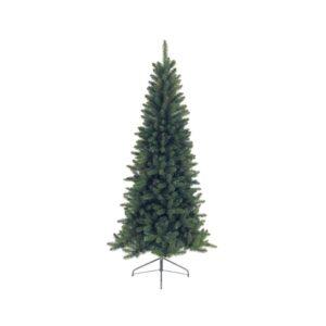 Lodge slime pine